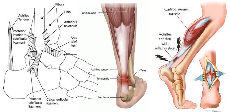 Где в киеве лечат суставы ортоцентр спортивное питание суставы отзывы